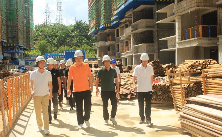 集团副总经理刘芮华到海南项目调研指导工作